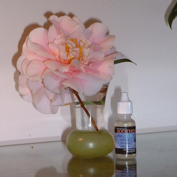 Aromatherapy Fragrance - Germ Killer - for AquaAir