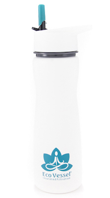 Aqua Vessel Stainless Insulated Filtering Bottle - 17 oz ON SALE